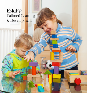 Eskil provides tailored learning & development to individual board members as well as larger cohorts