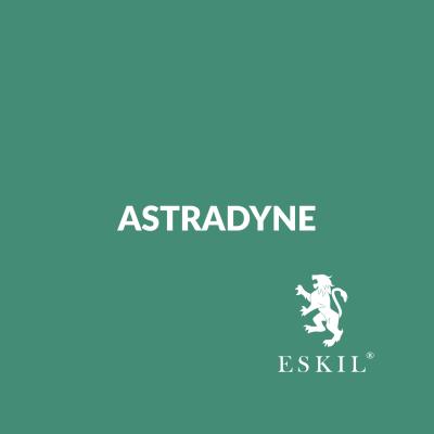 Astradyne – Idea Generation Workshop