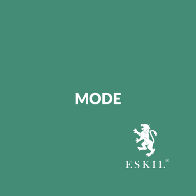 Mode – Mapping Intrapreneurship Workshop
