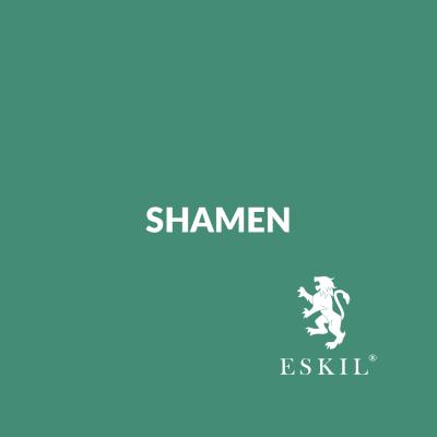Shamen – Innovative Thinking Workshop