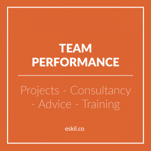 Eskil is an international boardroom development company and one of its areas of excellence is in team performance - working with the boardroom as well as teams further down in the structure as we future-proof your organization